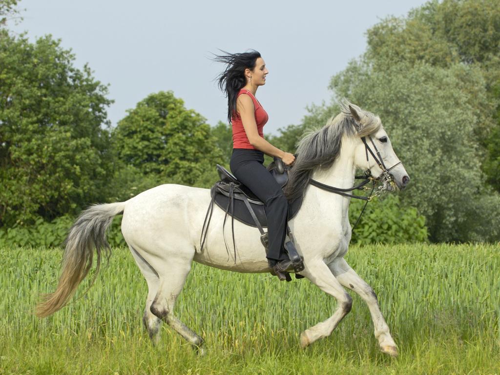 чем полезна верховая езда для женщин девочки
